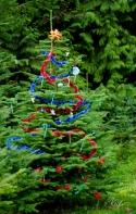En Güzel Doğal Yılbaşı Ağaçları